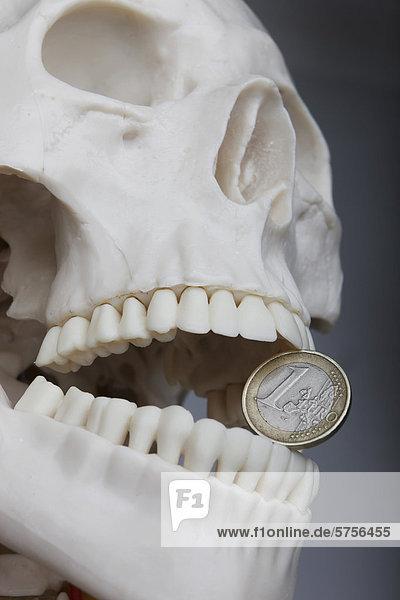 Skelett mit Euro-Münze zwischen den Zähnen  Symbolbild Eurokrise