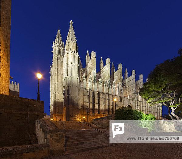 La Seu Cathedral  Parc de la Mar  old town  Ciutat Antiga  Palma de Mallorca  Majorca  Balearic Islands  Spain  Europe