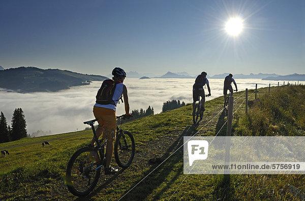 Mountain bikers at Salvensee Lake  Mt Hohe Salve  Mt Kitzbueheler Horn  Kitzbuehel Alps  Tyrol  Austria  Europe