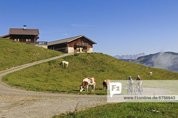Alte Bauernhöfe  Hohe Salve  Kitzbühler Alpen  Tirol  Österreich  Europa