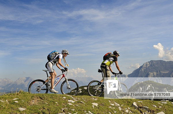 Mountain bikers cycling on Steinplatte mountain  Loferer Steinberge mountain range at the back  Tyrol  Austria  Europe