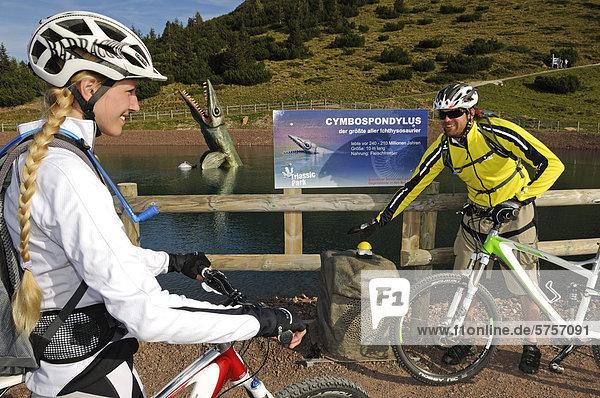 Mountainbiker im Triassic Park  Steinplatte  Waidring  Tirol  Österreich  Europa
