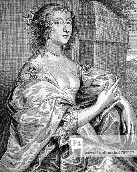 Gräfin Percy  Porträt von Anton van Dyck  17. Jahrhundert