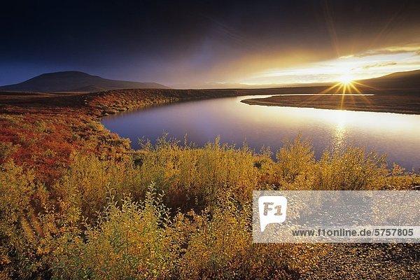 Unbenannte Teich und Herbstfarben in Blackstone Bergland nahe Dempster Highway  Yukon  Kanada.