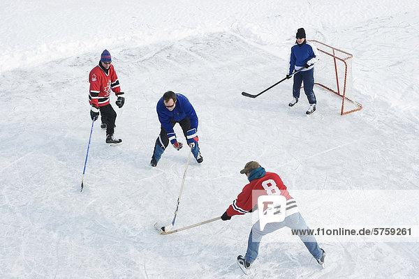 See 1 3 gefroren Hockey spielen