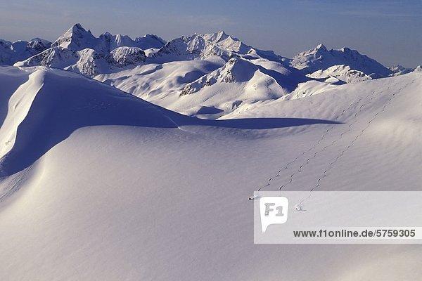 Skifahrer am Coast Mountains  British Columbia  Kanada.