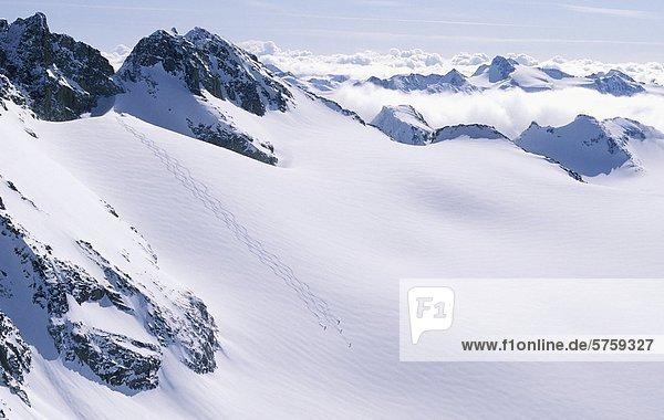 Heli Ski Coast Mountains  British Columbia  Kanada.
