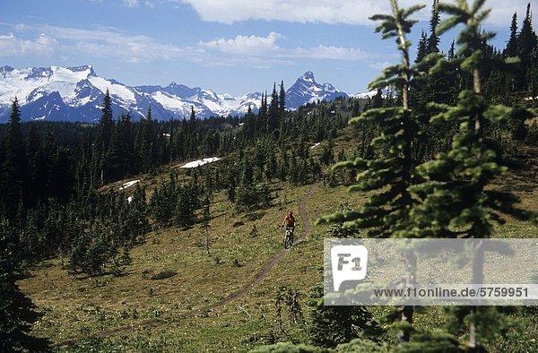 Frau Mountainbiken in Revelstoke  Britisch-Kolumbien  Kanada.