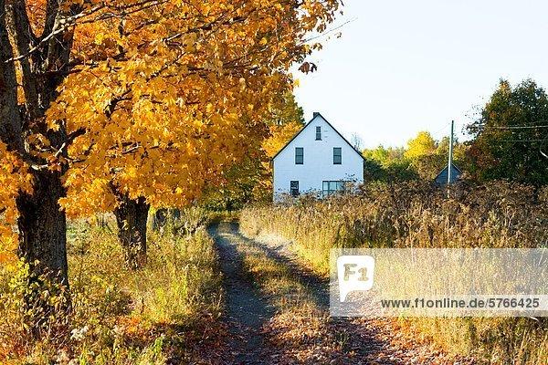 Kanada New Brunswick Neubraunschweig