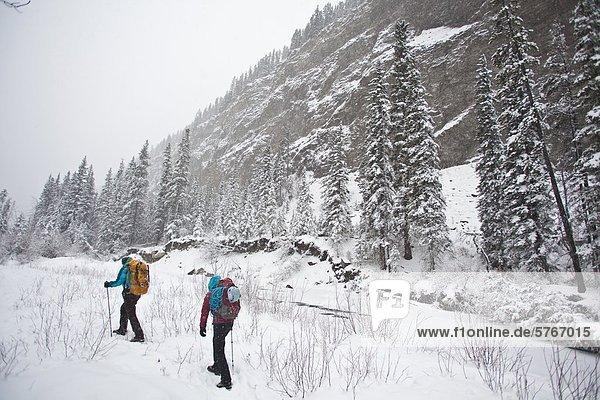 Zwei weibliche Eiskletterer Überschrift um zu klettern Moonlight WI4  auch Thomas Creek  Kananaskis  Alberta  Kanada