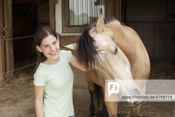 Paint Horse  Traishof  Königsbach-Stein  Baden-Württemberg  Deutschland  Europa