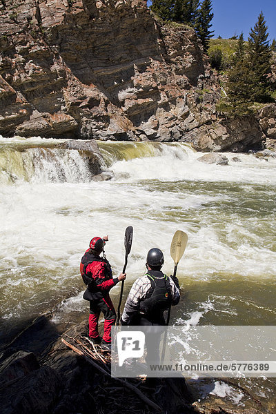 Two male whitewater kayakers scout the falls on the Oldman River  Alberta  Canada