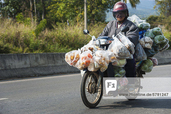 Man with many bags riding a laden motorcycle  Northern Thailand  Thailand  Asia