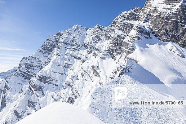 Watzmann-Ostwand mit Skispuren  Berchtesgadener Alpen  Bayern  Deutschland