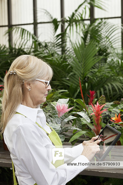 Side view of a senior woman using tablet pc in greenhouse