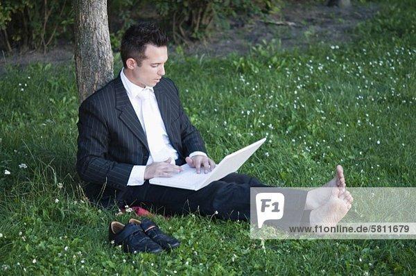 Geschäftsmann benutzt Laptop auf einer Wiese