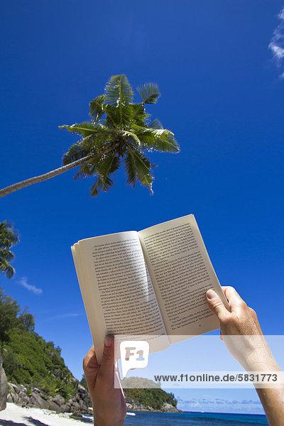 Frau liest Buch vor Kokospalme (Cocos nuzifera) am Strand  Süd-Mahe  Mahe  Seychellen  Afrika  Indischer Ozean