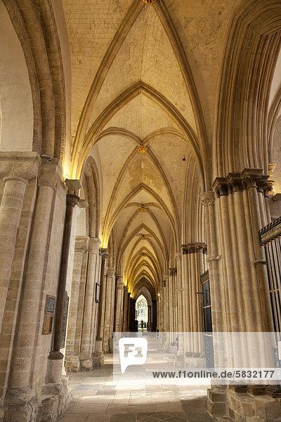 Seitengang in der Kathedrale von Chichester  Chichester  West Sussex  England  Großbritannien  Europa