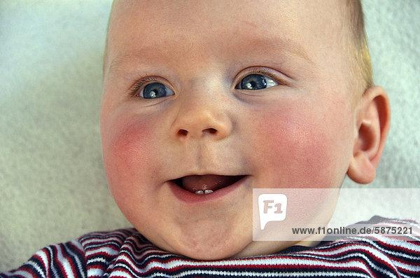 Baby  six months  portrait