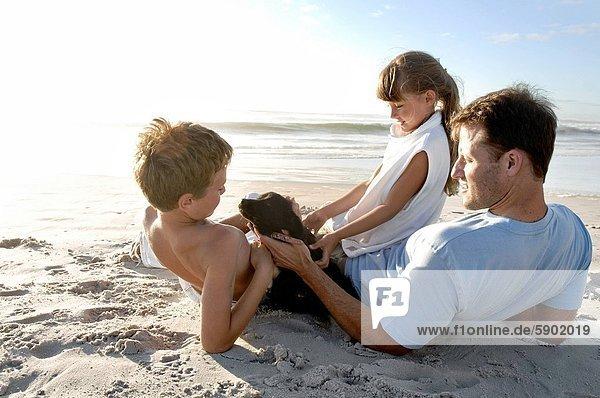 sitzend  Mann  Strand  Hund  Mittelpunkt  Rückansicht  Ansicht  Erwachsener  spielen