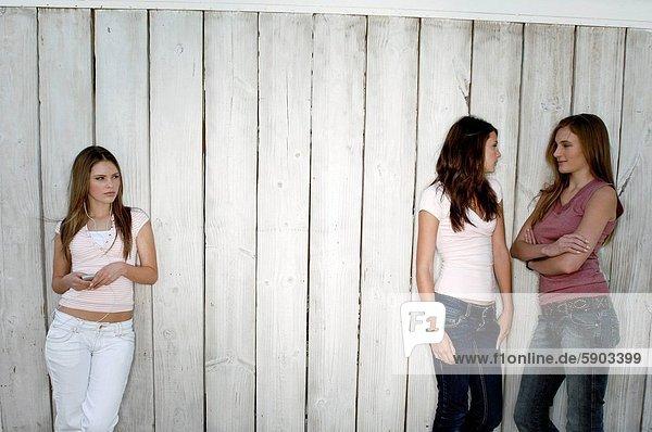 stehend nebeneinander neben Seite an Seite junge Frau junge Frauen Frau sprechen 2 jung