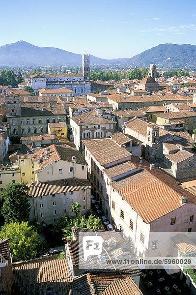 Ansicht Süden von Guinici Turm der Dächer der Stadt und der Kathedrale von Lucca  Toskana  Italien  Europa