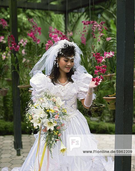 Braut Blick auf Orchideen  Asien
