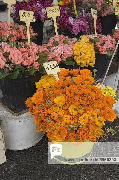 Marche Aux Fleurs  Cours Saleya  Nizza  Alpes Maritimes  Provence  Cote d ' Azur  Côte d ' Azur  Frankreich  Europa