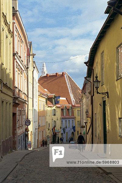Altstadt  Tallinn  Estland  Baltikum  Europa