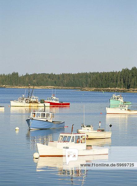 Hummer Boote im Hafen von Stonington  Deer Isle  Maine  New England  Vereinigte Staaten von Amerika  Nordamerika