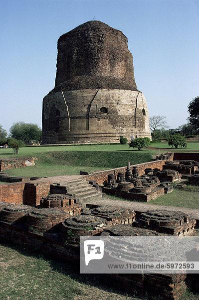 Dhamekh buddhistische Stupa in Sarnath  in der Nähe von Varanasi (Benares)  Uttar Pradesh  Indien  Asien