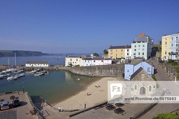 The old historic harbour in evening summer sunshine  Tenby  Pembrokeshire National Park  West Wales  Wales  United Kingdom  Europe