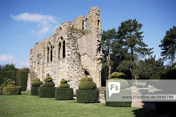 Wenlock Priory und Topiari  viel Wenlock  Shropshire  England  Vereinigtes Königreich  Europa