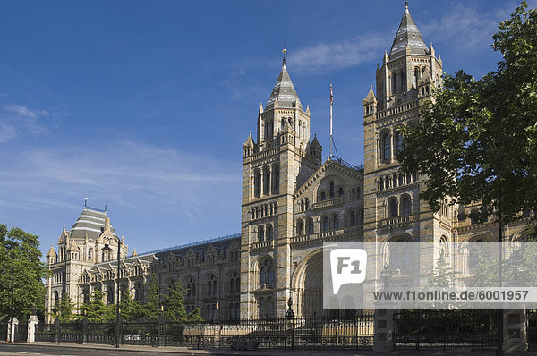 The Natural History Museum  London  England  United Kingdom  Europe