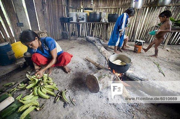 Kochen Wegerich  Amazonas  Ecuador  Südamerika