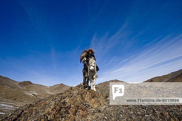 Ein Adler-Jäger heraus an einem Morgen jagen im Altai-Gebirge  Bayan Ölgii  Mongolei  Zentralasien  Asien