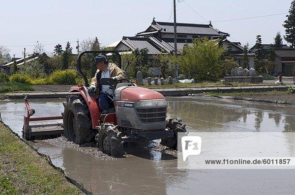 Reis Bauern Pflügen seiner Reisfeld im Frühjahr vor der Pflanzung Saison  Nagano  Japan  Asien