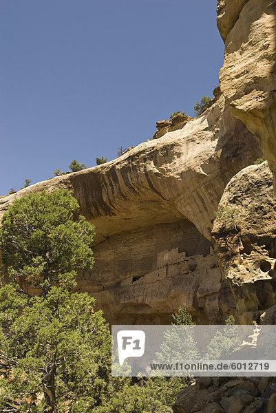 Vereinigte Staaten von Amerika USA Nordamerika Colorado
