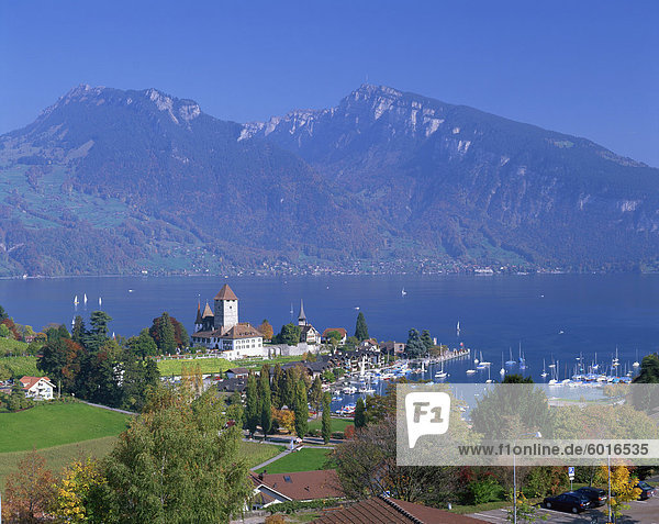 View over town and harbour of Spiez on Lake Thunersee in the Bernese Oberland  Switzerland  Europe