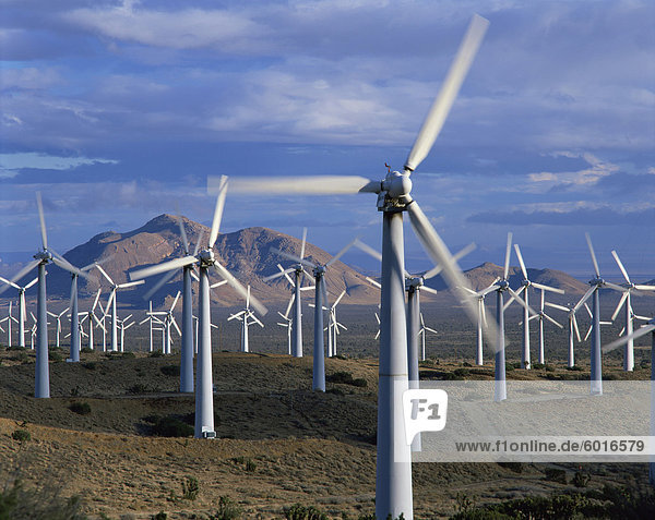 Wind turbines producing electricity on a wind farm in California  United States of America  North America