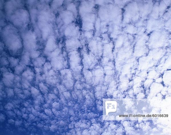 Puffy white clouds cover a blue sky