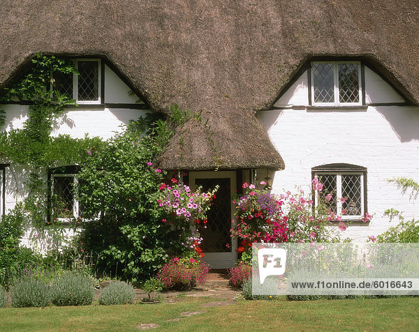 Thatched cottage with hanging baskets full of summer flowers in Dorset  England  United Kingdom  Europe