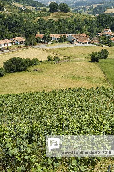 Landschaft in der Nähe von St. Jean Pied de Port  baskische Land  Pyrenees-Atlantiques  Aquitaine  Frankreich  Europa