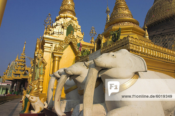 Elefanten Statuen und Schreine in Yangon (Rangoon)  Myanmar (Birma)  Shwedagon Paya  Asien Elefanten Statuen und Schreine in Yangon (Rangoon), Myanmar (Birma), Shwedagon Paya, Asien