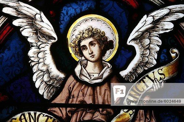 Angel  New York  United States of America  North America