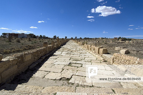 One of the main roads at the Roman ruin of Sbeitla  Tunisia  North Africa  Africa