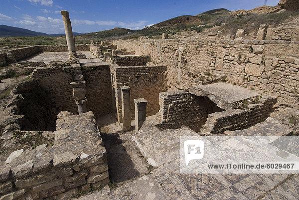 House of the New Hunt  Roman ruins of Bulla Regia  Tunisia  North Africa  Africa