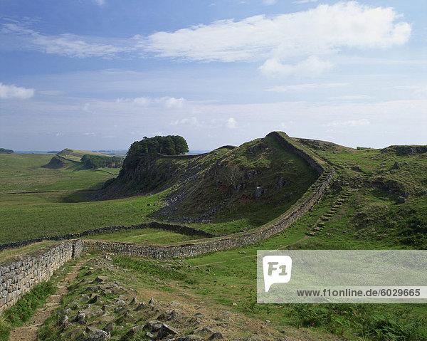 Hadrian's Wall  UNESCO World Heritage Site  Northumberland  England  United Kingdom  Europe