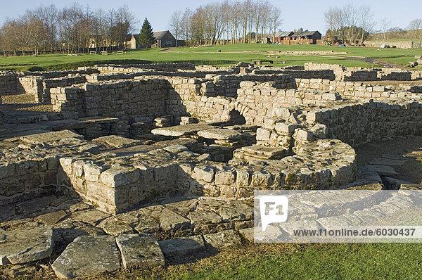 Roman Fort und Siedlung am Vindolanda  Südseite der Roman Wall  UNESCO Weltkulturerbe  Northumbria  England  Vereinigtes Königreich  Europa