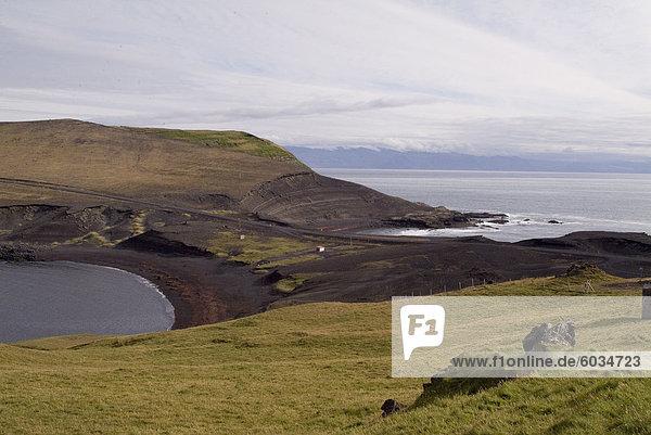 In der Nähe von Heimaey  Westman Inseln  Island  Polarregionen